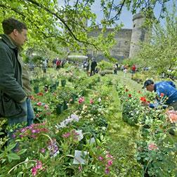 Fête des plantes château St Vidal Haute-Loire