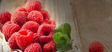 alimentation bio auvergne