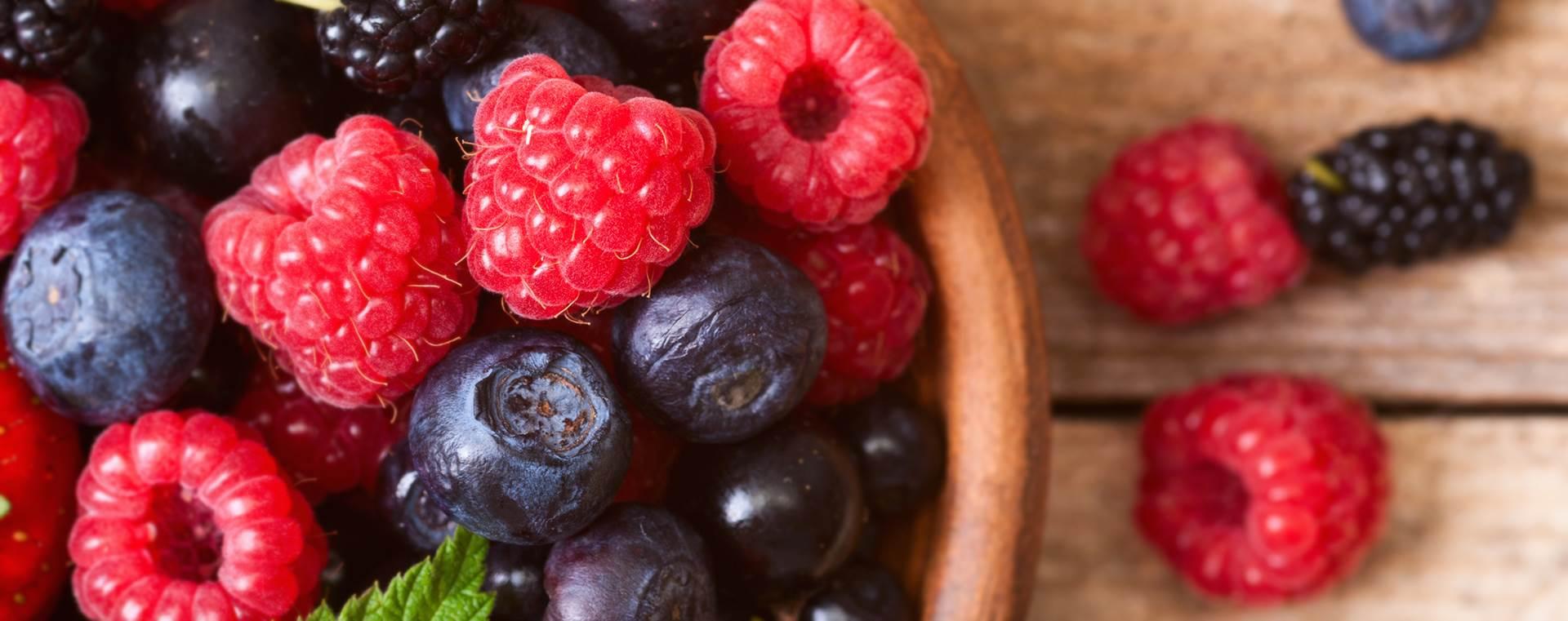 culture biologique fruits rouges